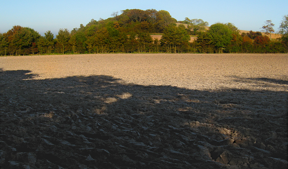 Monday October 13th (2008) ploughed field