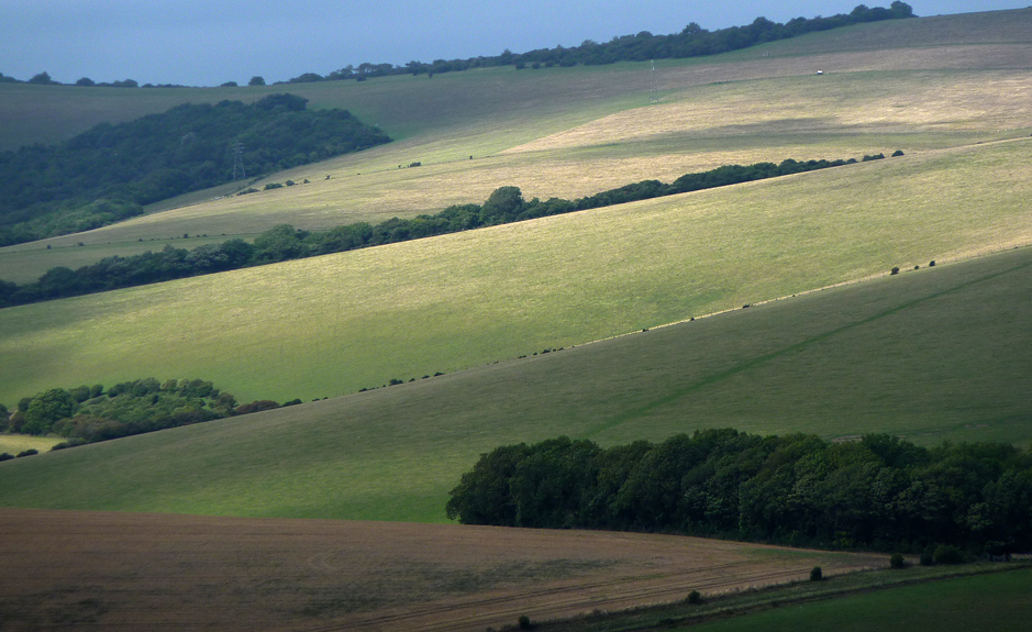 Monday August 23rd (2010) downland