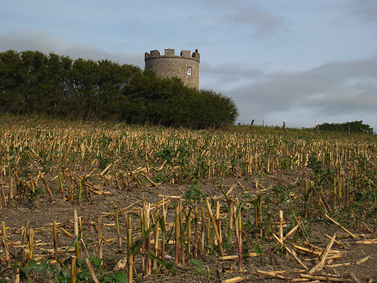 Saturday September 29th (2007) firle tower and corn field