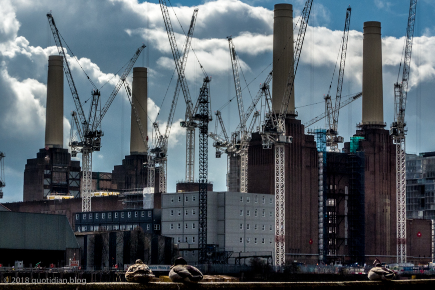 Sunday March 25th (2018) battersea power station and ducks