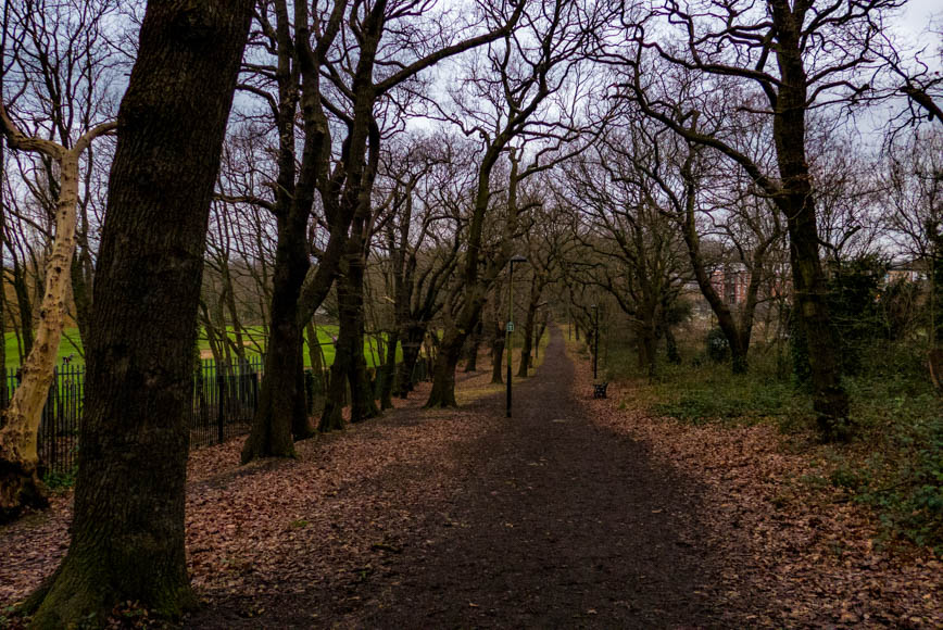 Saturday January 6th (2018) coxs walk, nr. lordship lane