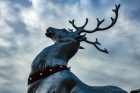 10th: covent garden reindeer